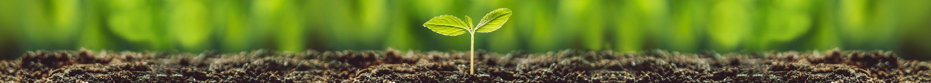 nachhaltigkeit-banner-breit